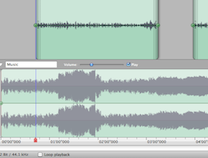 Amadeus Pro - Audio waveform editor / sound and voice